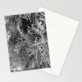 Land Coral 2 Stationery Cards
