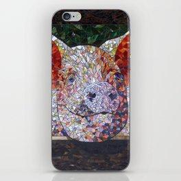Elmer iPhone Skin