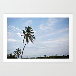 Florida Keys Art Print