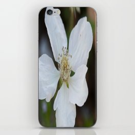 Dewberry iPhone Skin