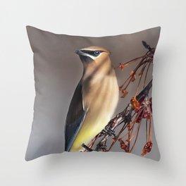 Cedar Waxwing Pose Throw Pillow