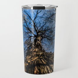 An Old Tree Through a Fish Eye Lens Travel Mug
