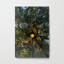 Savannah Forsyth Park VIII Metal Print