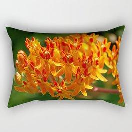 Butterflyweed, Asclepias tuberosa Rectangular Pillow
