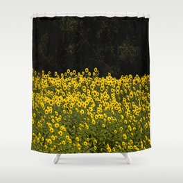 Sunflower Field On A Dark Background #decor #buyart Shower Curtain
