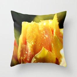 Raindrop Cactus Flower Throw Pillow