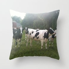 German Cows Throw Pillow