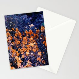 Infrarouge  Stationery Cards