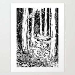 In the Shadow of Cedars Art Print