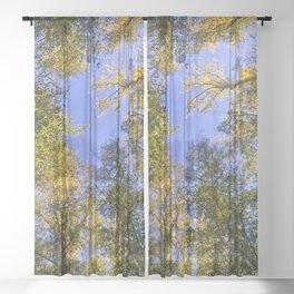 Treetops Sheer Curtain