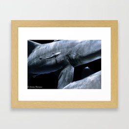 Shark Crossing Framed Art Print