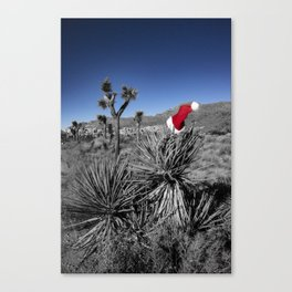 Holiday Cheer | Joshua Tree National Park Canvas Print