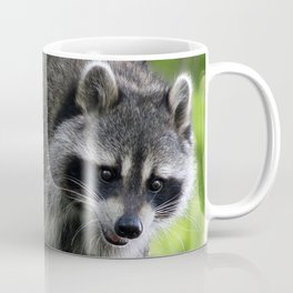 Raccoon In Tree Coffee Mug