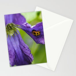 Ladybug on a petal Stationery Cards