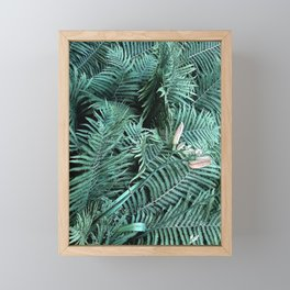 Fern leaves tropical jungle exotic plants floral botanical flowers Framed Mini Art Print