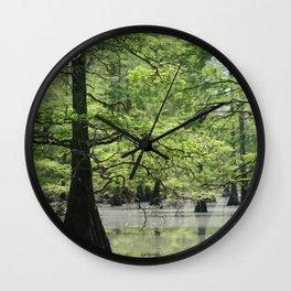 Cypress Trees in the Louisiana Swamp Wall Clock