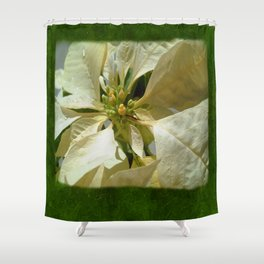 Pale Yellow Poinsettia 1 Blank P1F0 Shower Curtain