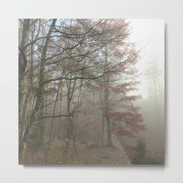 Road Fog 2 Metal Print