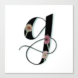 gerbera daisy Canvas Print