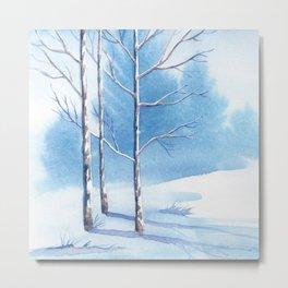 Winter scenery #6 Metal Print