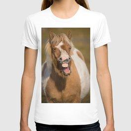 Icelandic Horse Laughing T-shirt