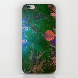 Sunlight in the Enchanted Forest iPhone Skin