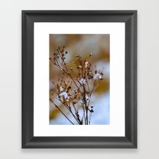 Frosty Days Framed Art Print