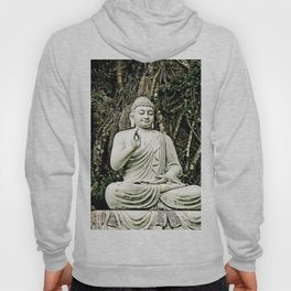 asian, religion, white old sitting buddha statue with raised hand Hoody