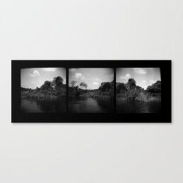 Fayette County Canvas Print