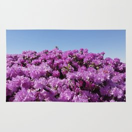 "View of ""Mount Rhodendron"" on a clear day Rug"