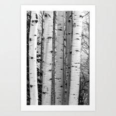 Into the Woods / Black & White Art Print