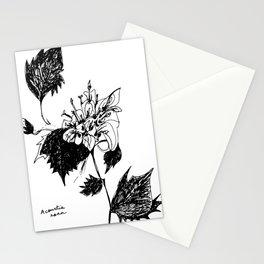 Acourtia nana Stationery Cards
