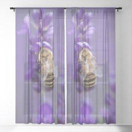 Lavender Bee Sheer Curtain
