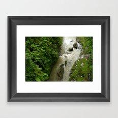 Jungle Floor Framed Art Print