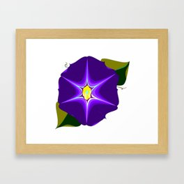 A Large Purple Morning Glory, Wildflower Series Framed Art Print