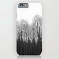 Trees in rows iPhone 6s Slim Case