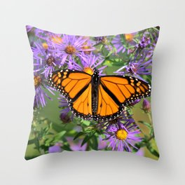 Monarch Butterfly on Wild Asters (square) Throw Pillow