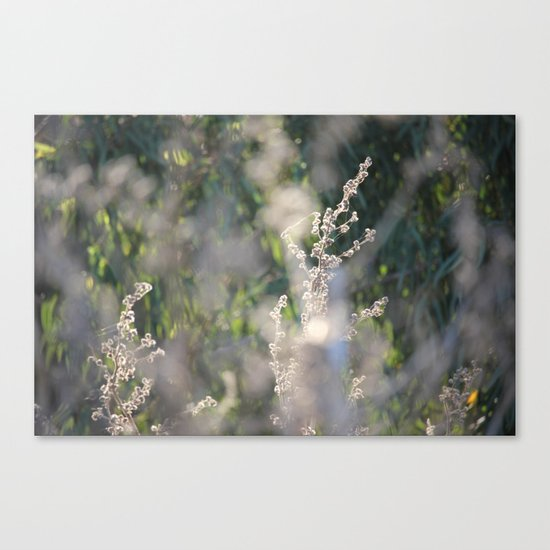 On The Sunny Side of Life Canvas Print