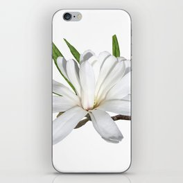 The Flower is the Star (Magnolia) iPhone Skin