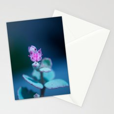 Trial Stationery Cards