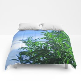 CannaBliss Comforters