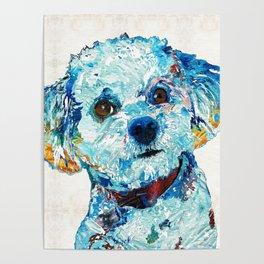 Small Cute Dog Art - Who Me? - Sharon Cummings Poster