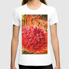 Burst in Red T-shirt