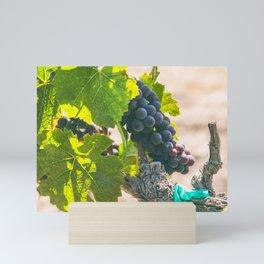 Ripen 2 Mini Art Print