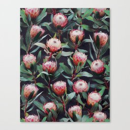Evening Proteas - Pink on Charcoal Canvas Print