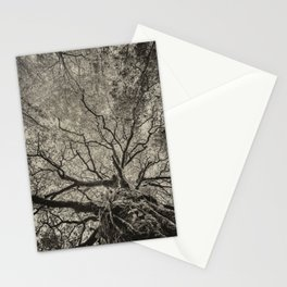 The old oak tree Stationery Cards