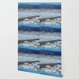 Frozen Beach Wallpaper
