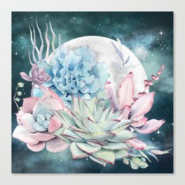 Beautiful Succulents Full Moon Teal Pink Canvas Print
