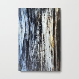 Damp on Wood Metal Print