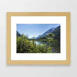 Wildflowers by the Side of Tern Lake Framed Art Print